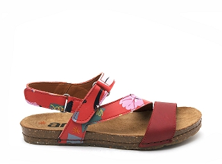 BORDER DERBY CANVAS CRETA 469F:Rouge