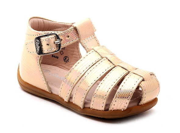 Aster nu pieds ofilie rose8966701_2